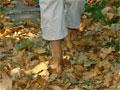 Debrecenben ősz van