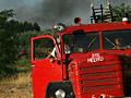 1000 hektár erdő égett le