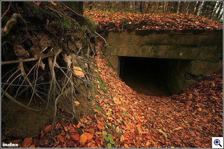 Pákai bunkerképek 2007 novemberéből