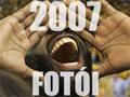 2007 legjobb fotói