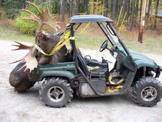 A vadászok egyik kedvenc járműve lett