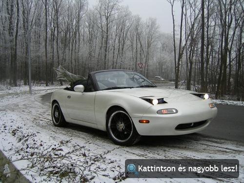 Fehér Mazda Miata fenyőfával. Fotó: Bird