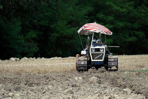 Lamborghini traktor a mezőn. Fotó: Don Scheunert/Flickr