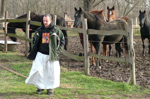 A szerzőt régóta nyugtalanítják a lovak