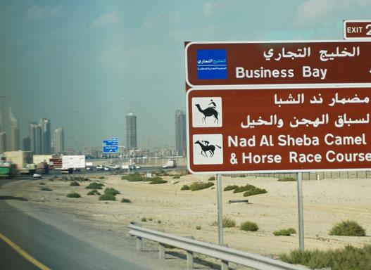 Ló- és teveversenypálya jobbra