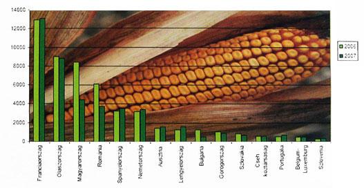 EU-tagállamok kukoricatermelési adatai 2006-2007-ben