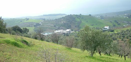 Malaga vidéke ilyenkor még nem olyan sivatagos