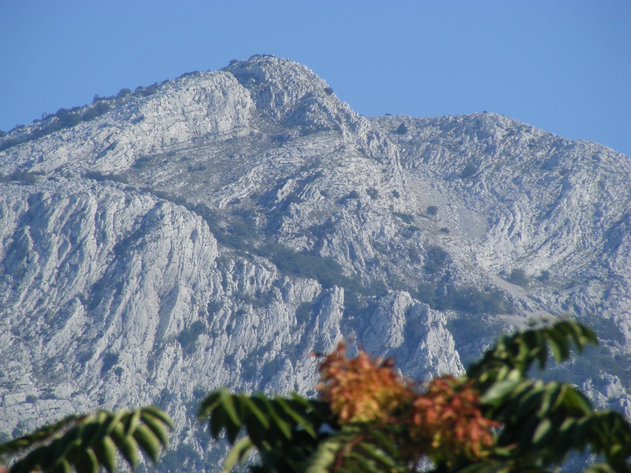 hegyvidéki társak randi ingyenes online társkereső csevegőszoba