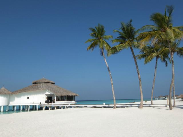 Csatlakoztassa a nyugati palm beach