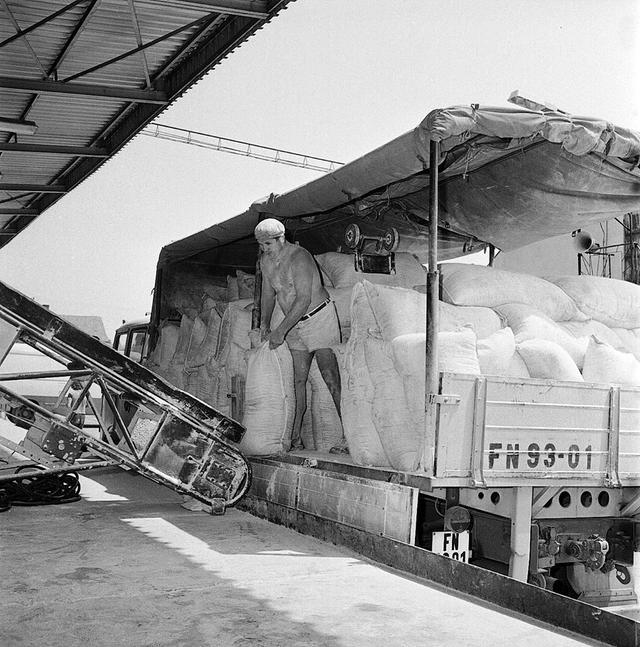 randi vintage atlasz konzervdobozok sebesség társkereső santa monica ca