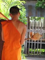 Thai farang randevú