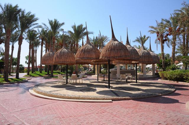 Idősebb randi palm sivatagban