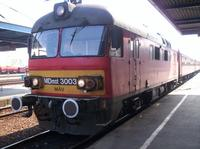 MDmot 3003