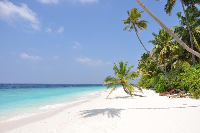 nem működik a halott sziget találat társkereső oldalak Trinidadban