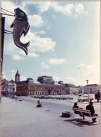 Az egykori bajai halászati téesz halboltja portálja reklámhalacskája.