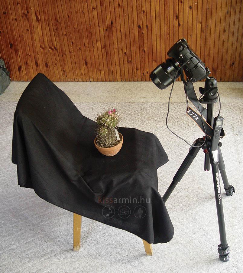 Biztonsági kamera szopás