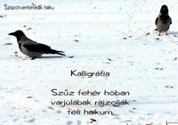 Mygan haiku - Kalligráfia