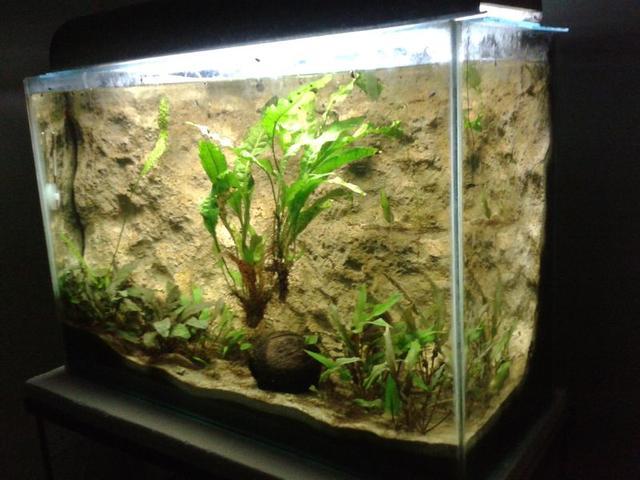Akváriumtartó bekapcsol
