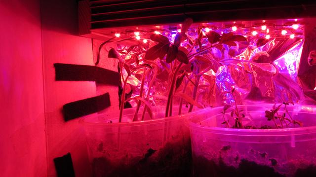 Usgs talajvíz társkereső labor