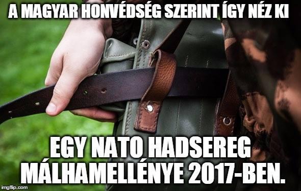 0e55fda2ad A Magyar Honvédség megsemmisült - Index Fórum