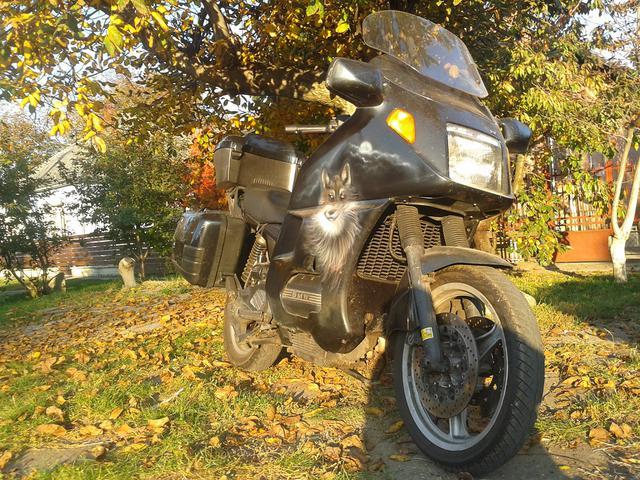 603730a0dd2b figyeld a tájat! nem a fa alatt! a motoron! ;)