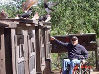Jerry Higgins az udvaon, e célra kialakított ládákban tartja a galambjait