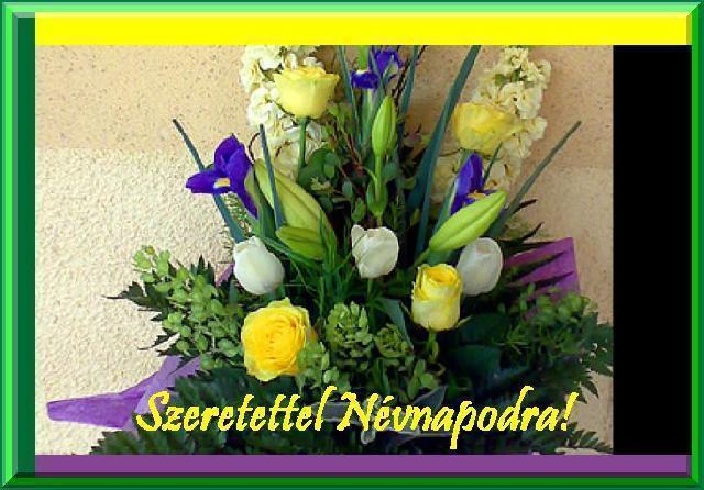 társkereső nonthaburi